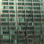 cladiri etajate2